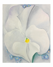 Georgia O'Keeffe Keepsake Boxed Notecards