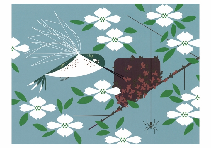 Charley Harper: Hummingbird Homemaker Notecard
