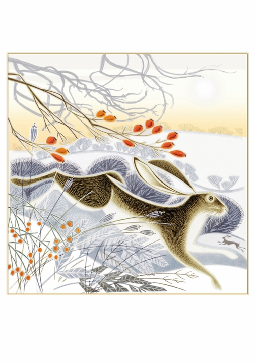 Jenny Tylden Wright: Hips, Haws and Hares Holiday Cards