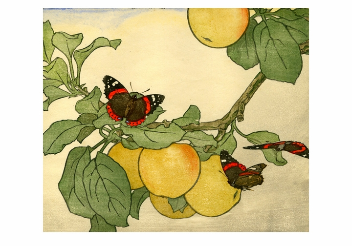 John Dickson Batten: Apples and Red Admirals Boxed Small Notecards
