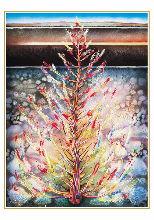 Judith Sparks: Tumbleweed by the Road Holiday Cards