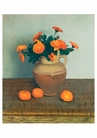 Marigolds and Tangerines Birthday Card