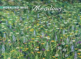 Rosalind Wise: Meadows Boxed Notecards
