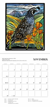 Molly Hashimoto: Birds & Blooms 2020 Mini Wall Calendar <B>SOLD OUT</B>