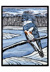 Molly Hashimoto: Kingfisher in the Snow Holiday Cards