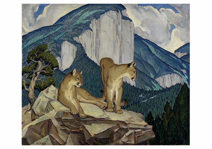 Mountain Lions Notecard