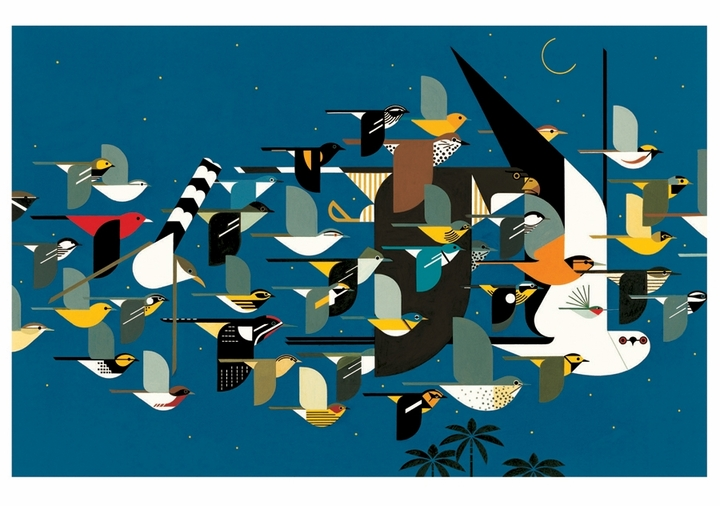 Charley Harper: Mystery of the Missing Migrants Notecard