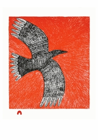 Ningiukulu Teevee: Flight Notecard