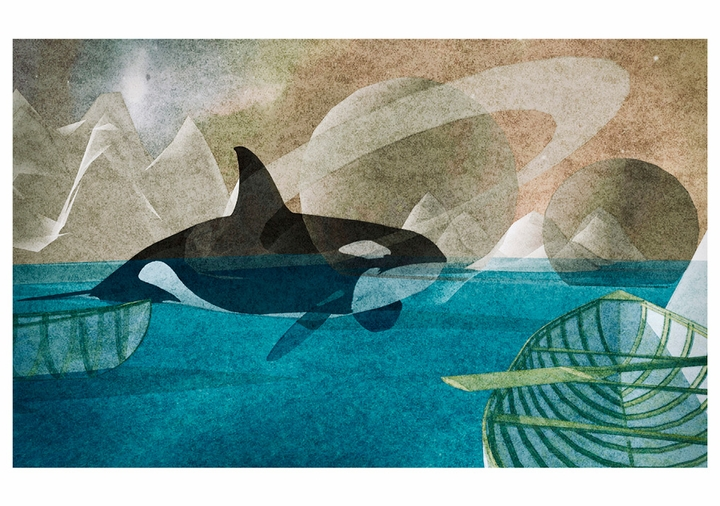 Orcas: spirits of the Coast Boxed Notecards