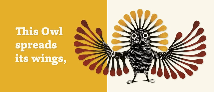 Owls and Loons: Inuit Art from Cape Dorset Board Book