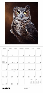 Owls: Paintings by Jeremy Paul 2020 Wall Calendar
