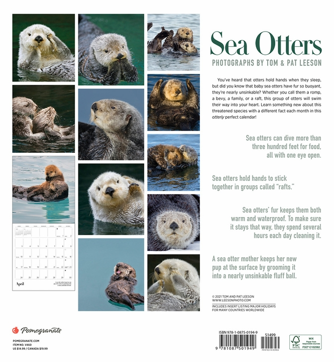 Sea Otters: Photographs by Tom and Pat Leeson 2022 Wall Calendar