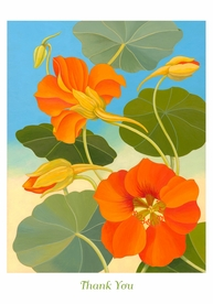 Siri Schillios: Nasturtium Thank You Notes