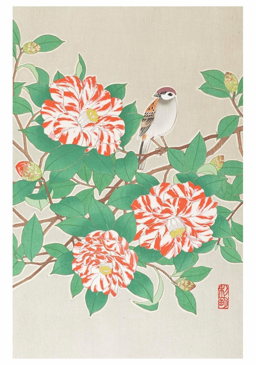 Sparrow on Red and White Camellia Notecard