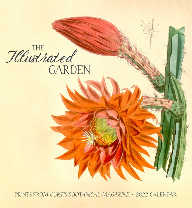 The Illustrated Garden: Prints from Curtis's Botanical Magazine 2022 Wall Calendar