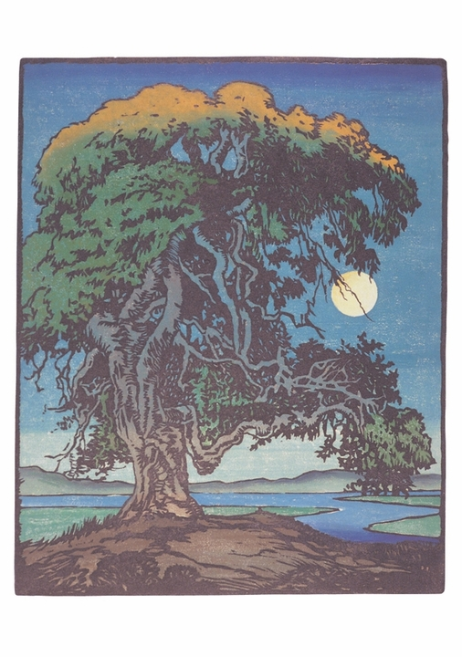 William S. Rice: The Landmark Oak Notecard
