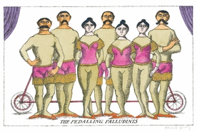 The Pedalling Palludinis Magnet