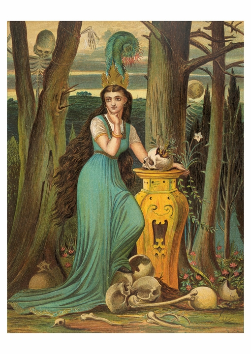 The Wicked Princess in Her Garden Postcard