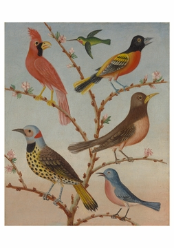 Thomas Coke Ruckle: Birds Notecard