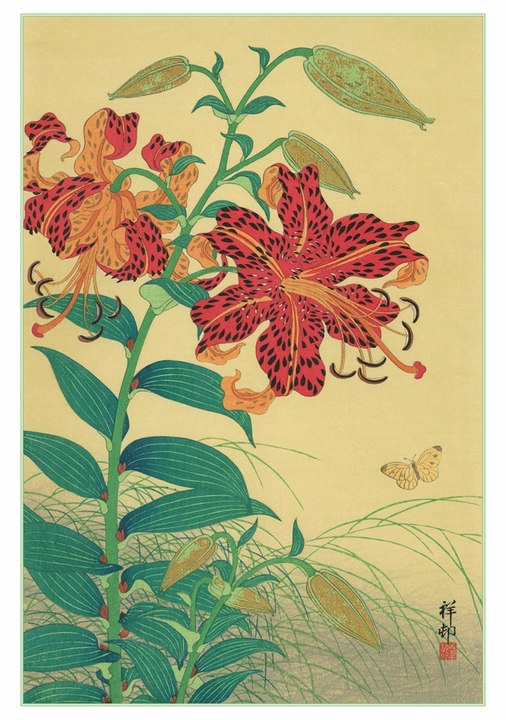 Tiger Lilies and Butterfly Notecard