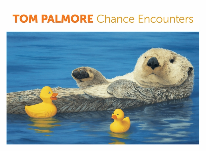 Tom Palmore: Chance Encounters Boxed Notecard Assortment