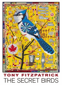 Tony Fitzpatrick: The Secret Birds Boxed Notecard Assortment