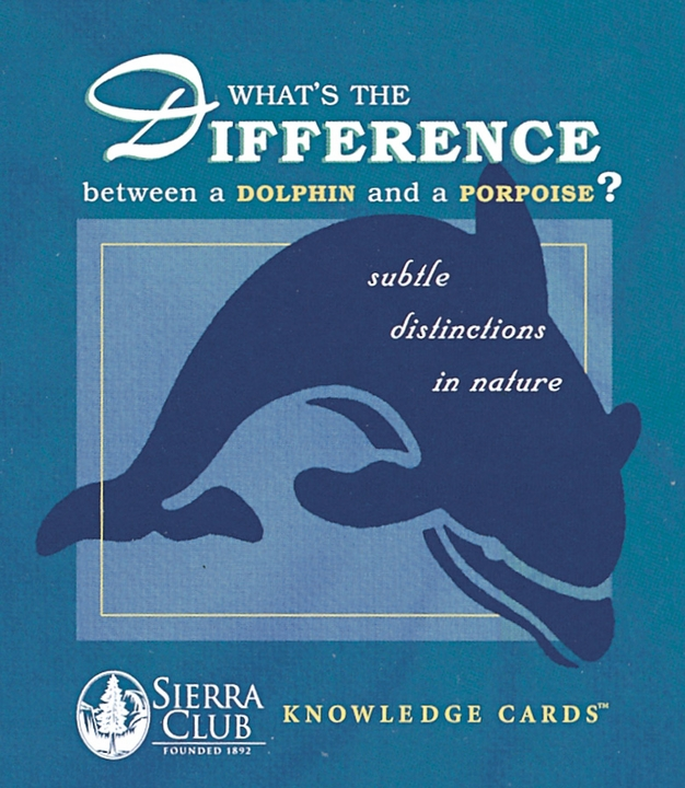 What's the Difference? Knowledge Cards