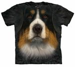 Bernese Mountain Dog Face Adult T-shirt