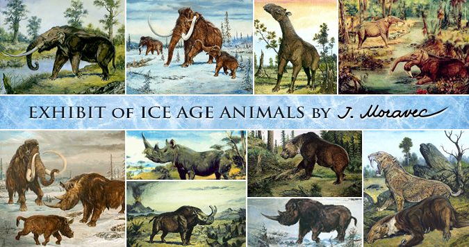 Exhibit of Ice Animals