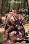 3D Triceratops Mailing Card