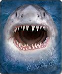 Wicked Nasty Shark Fleece Blanket