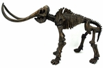Woolly Mammoth Skeleton Fossil Replica, 30""