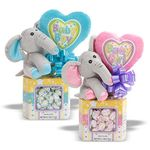 Baby Plush Candy Gift Assortment