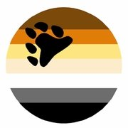 Button Bear Pride Flag   Large 2-1/4""