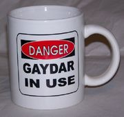 Danger Gaydar in Use  Mug