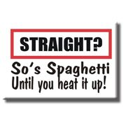 Gay Pride Refrigerator Magnet  Straight? So is Spaghetti