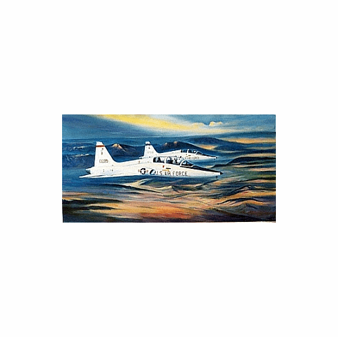 """T-38 """"Two Ship"""" 16x24"""