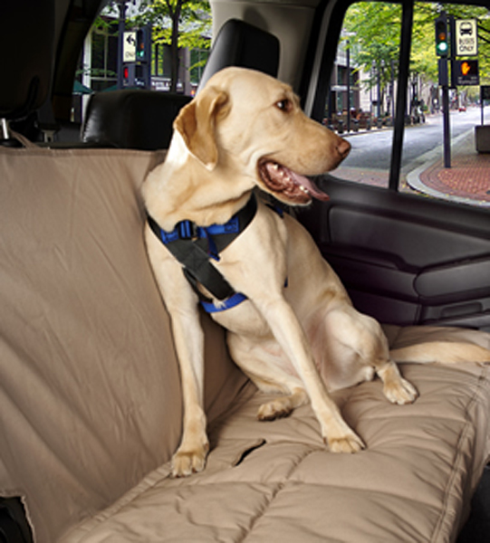 Image of Canine Covers Dog Travel Safe Harness