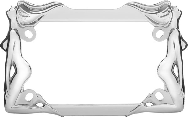 Chrome Twins Motorcycle License Plate Frame