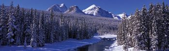 National Geographic Banff National Park Rear Window Decal