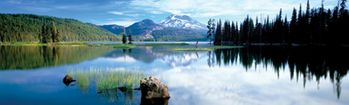 National Geographic Cascade Mountains Rear Window Decal