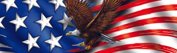 Patriot Eagle Flight Rear Window Decal