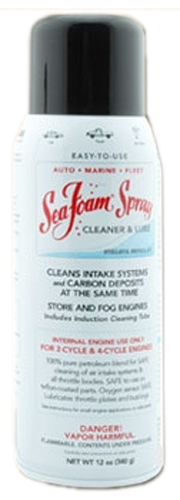 Sea Foam Engine Intake Cleaner Spray (12 oz.)