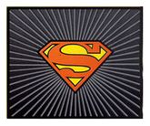Superman Utility Mat