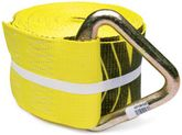 "Winch Strap with Delta Ring (4"" x 30')"