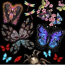 "<font size=""2"" color=""purple""><b><center> Butterflies - Dragonflies & Other Insects!<br></b><font size=""1"" color=""purple""></font>"