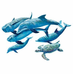 SALE! Five Swimming Dolphins Plus Size & Supersize T-Shirts S M L XL 2x 3x 4x 5x 6x 7x 8x (All Colors)