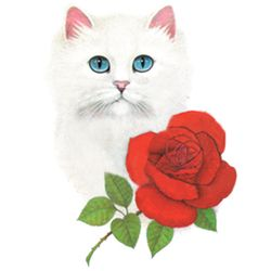 SALE! White Cat & Red Rose Plus Size & Supersize T-Shirts S M L XL 2x 3x 4x 5x 6x 7x 8x 9x (Light Colors Only)