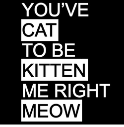 SALE! You've Cat To Be Kitten Me Right Meow Plus Size & Supersize T-Shirts S M L XL 2x 3x 4x 5x 6x 7x 8x 9x (Dark & Medium Colors)