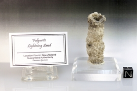 "Fulgurite Lightning Sand ""Black Collared"" NEW"